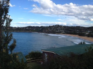View over Whale Beach